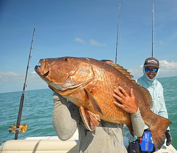 Voyage de pêche en guyane carpe rouge battures du connétable